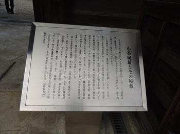 DSCN8978.JPG